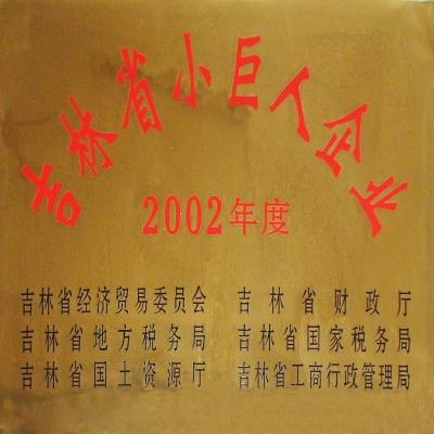 吉林省小巨人企业